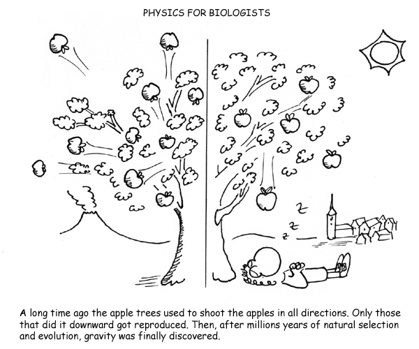 physics for biologists